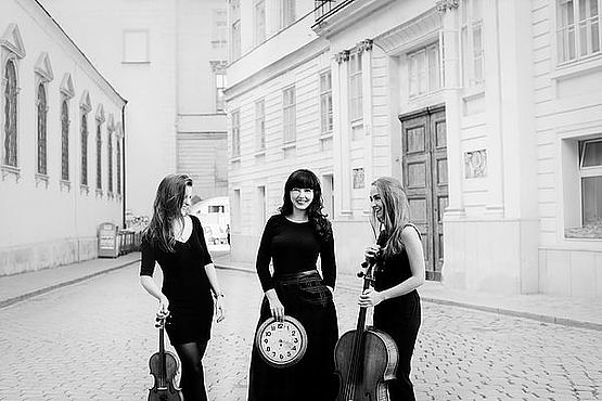 Trio Immersio © Julia Wesely
